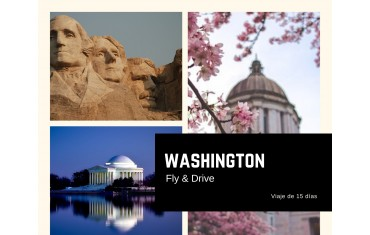 Washington Fly & Drive